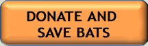 donate and save bats button-smaller